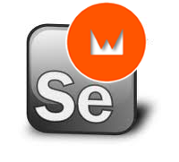 Wicket and Selenium IDE